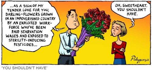 polyp_cartoon_Flowers_Cash_Crop